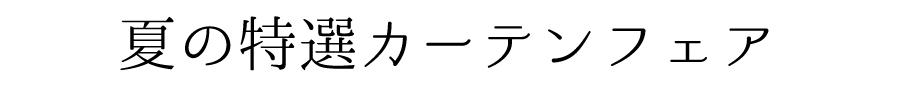 キャンペーンタイトルバー(ロゴなし)